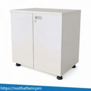 Tủ tài liệu Fami SME6220K